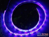 Đèn LED (80cm) Dây màu đỏ blue chiếu sáng cho Case
